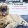 Usare le estensioni per browser