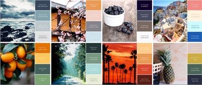 Immagine coordinata-combinazione-colori