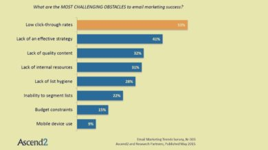 Ostacoli a una buona riuscita dell'Email Marketing_fonteAscend2.
